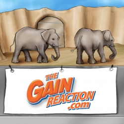 Gain Reaction